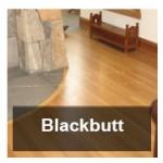 blackbutt