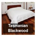 tasmanianblackwood