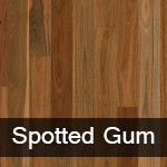 Australian Native Spotted Gum